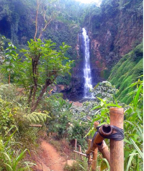 5 Wisata Lumajang Bisa Kunjungi Tgb Ri1 Air Terjun Manggisan
