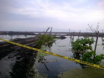 Kerusakan Pantai Watu Pecak Akibat Tambang Illegal Desa Selok Inilah