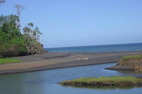 Pesona Keindahan Wisata Pantai Tlepuk Lumajang Daftar Tempat Kab