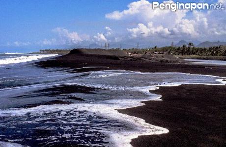 Tempat Wisata Pantai Diminati Lumajang Penginapan Net 2018 Watu Pecak