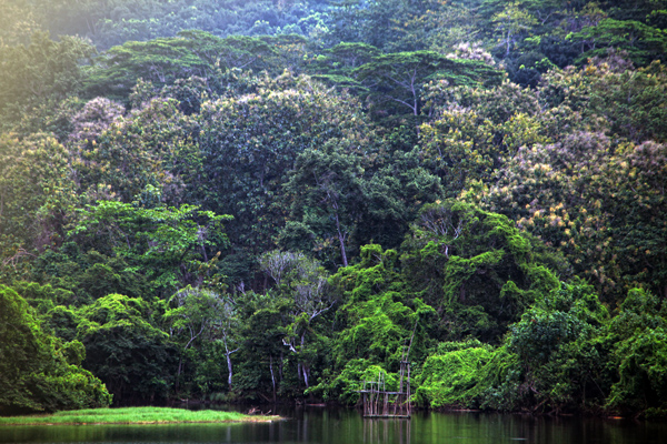 Watu Godeg Objek Wisata Pantai Memukau Lumajang Twisata Biasanya Ramai