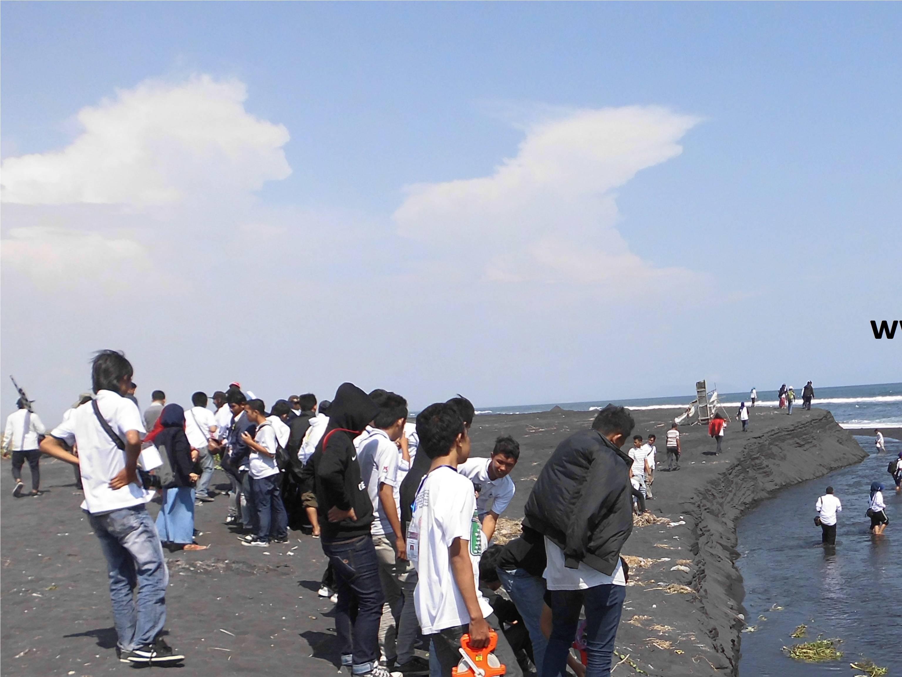 Watu Pecak Www Affajri Wordpress Observasi Pantai Tlepuk Kab Lumajang