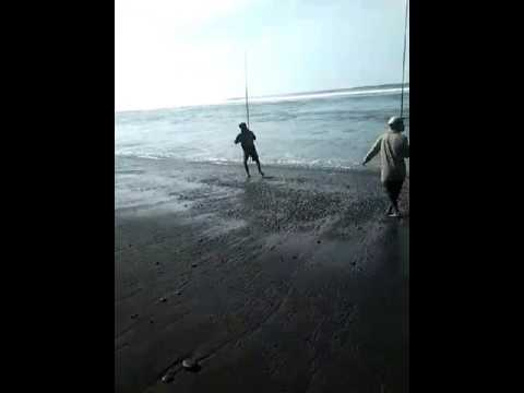 Lumajang Staight Watu Pecak Youtube Pantai Kab