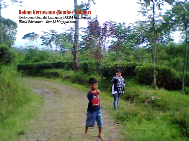 Hobi Dunia Wisata Hijau Kebun Teh Kertowono Lumajang Agro Perkebunan