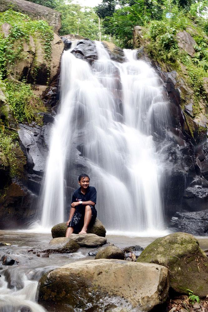 Kebun Teh Kertowono Kim Sinar Harapan Perkebunan Kab Lumajang