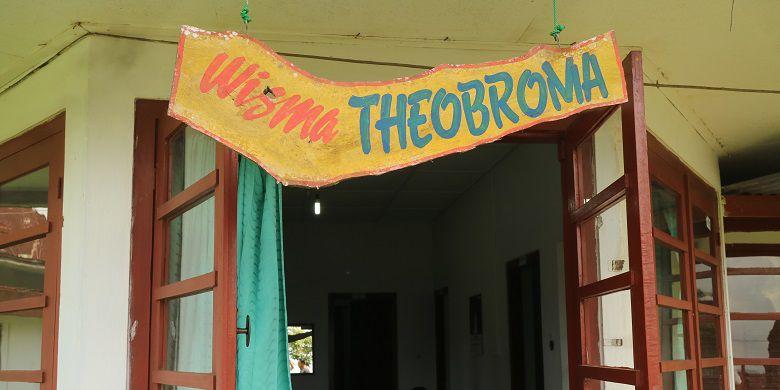 Menginap Rumah Peninggalan Belanda Sejak 1910 Lumajang Wisma Theobroma Area