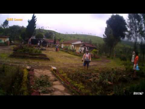 Mtb Kebun Teh Kertowono Youtube Perkebunan Kab Lumajang