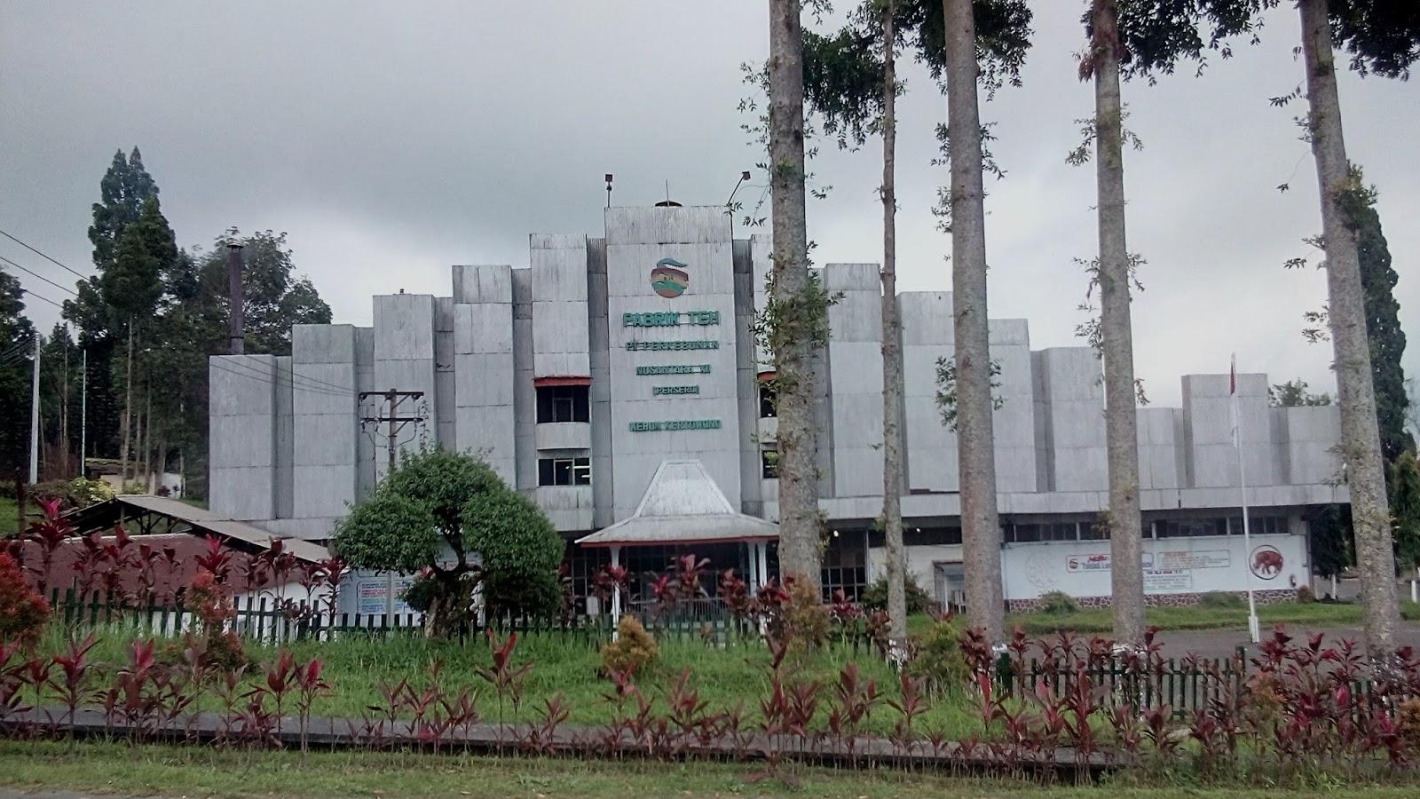 Paket Wisata Puncak Kbr 74 Kebun Teh Kertowono Pabrik Gucialit