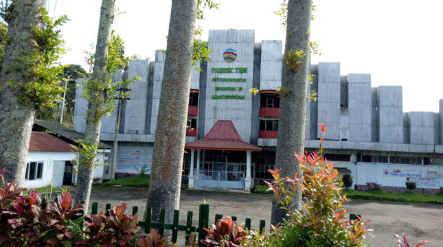 Sejarah Berdirinya Pabrik Perkebunan Teh Kertowono Pt Nusantara Xii Ptpn