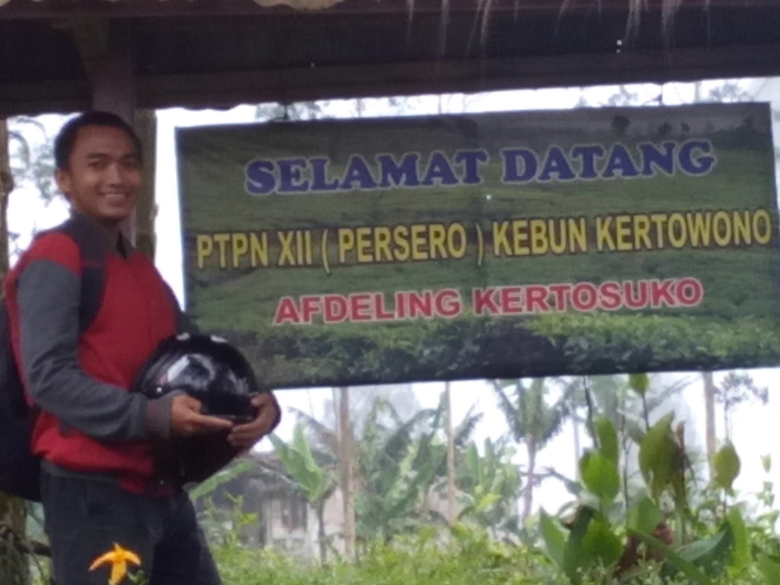 Teh Kertowono Hangoutbareng Konon Katanya Desa Bagus Beudd Dikala Senja