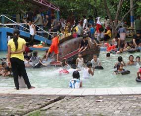 Tempat Wisata Kota Lumajang Water Park Kawasan Wonorejo Terpadu Kab