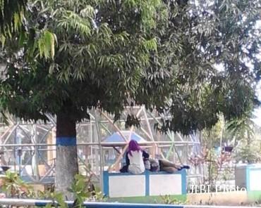 Bermesraan Alun Kota Madiun Sepasang Remaja Dikecam Tempat Dduduk Kab