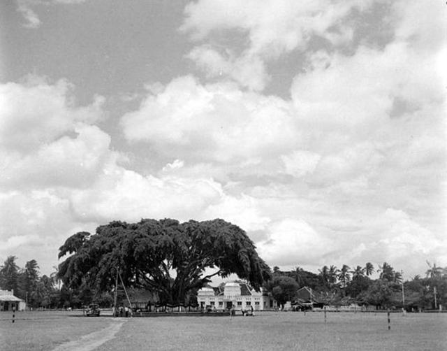 Koleksi Foto Jadul Kota Madiun Tempo Dulu Alun Kab