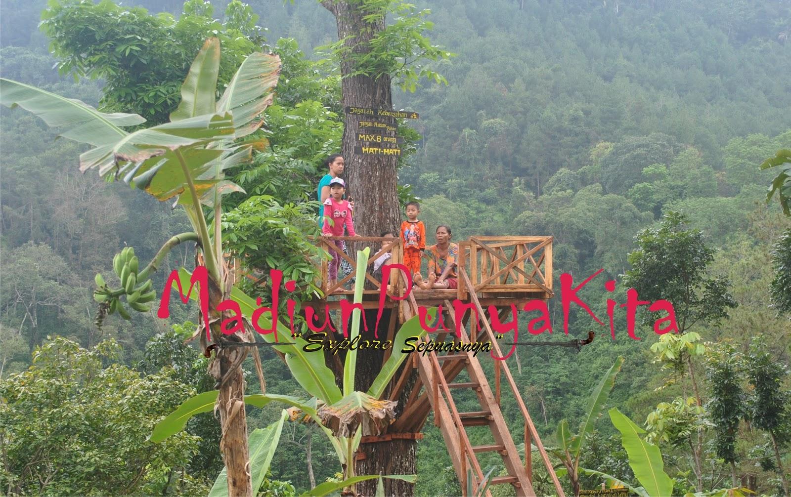 Rumah Pohon Tujuan Wisata Alam Tempat Berselfie Madiun Punya Pemandangan