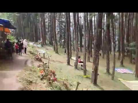 Wisata Nongko Ijo Madiun Youtube Desa Brumbun Tubing Adventure Kab