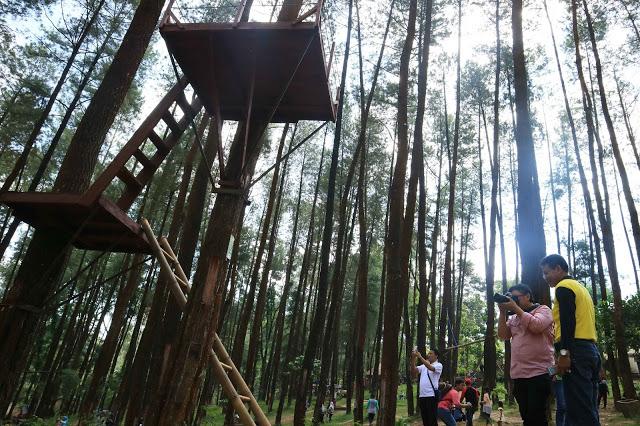 Explore Nongko Ijo Melalui Lomba Fotografi Informasi Madiun Hutan Pinus