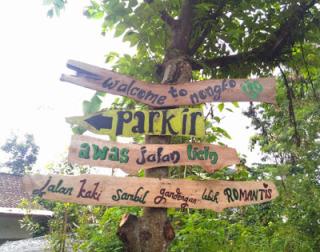 Pesona Wisata Daerah Hutan Pinus Nongko Ijo Kecamatan Kare P