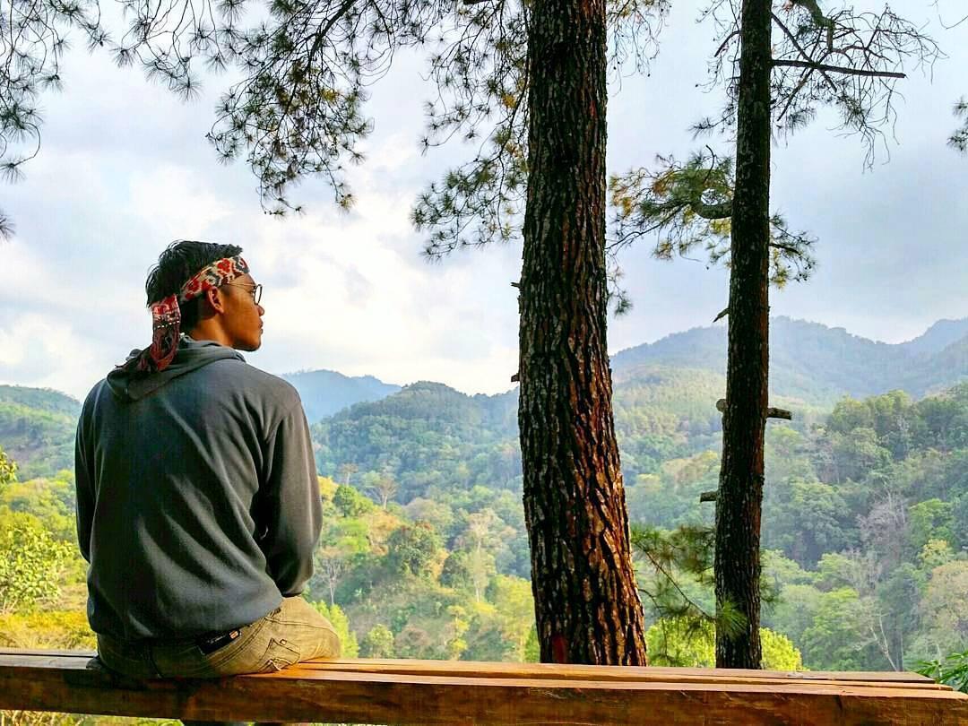 Wana Wisata Hutan Pinus Nongko Ijo Madiun Raya Kare Kab