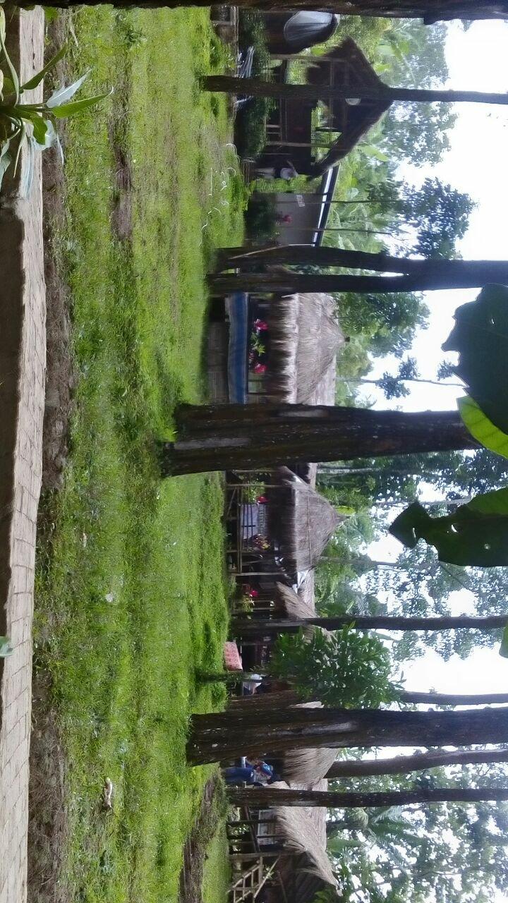 Wisata Alam Hutan Pinus Nongko Ijo Kabupaten Madiun Kumalasatriady Asalamualaikum