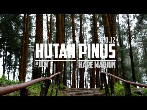 Wisata Hutan Pinus Nongko Ijo Desa Kare Hasanwap Madiun Kab