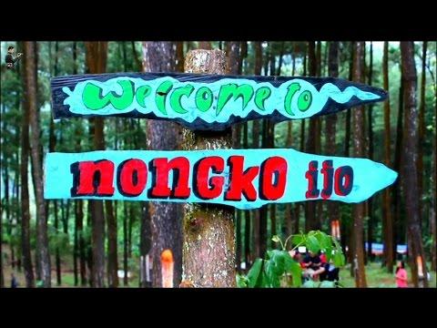 Wisata Hutan Pinus Nongko Ijo Desa Kare Youtube Kab Madiun