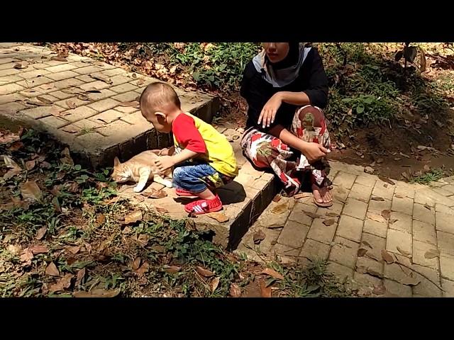 Wisata Hutan Pinus Nongko Ijo Kare Kabupaten Madiun Travelerbase Kab