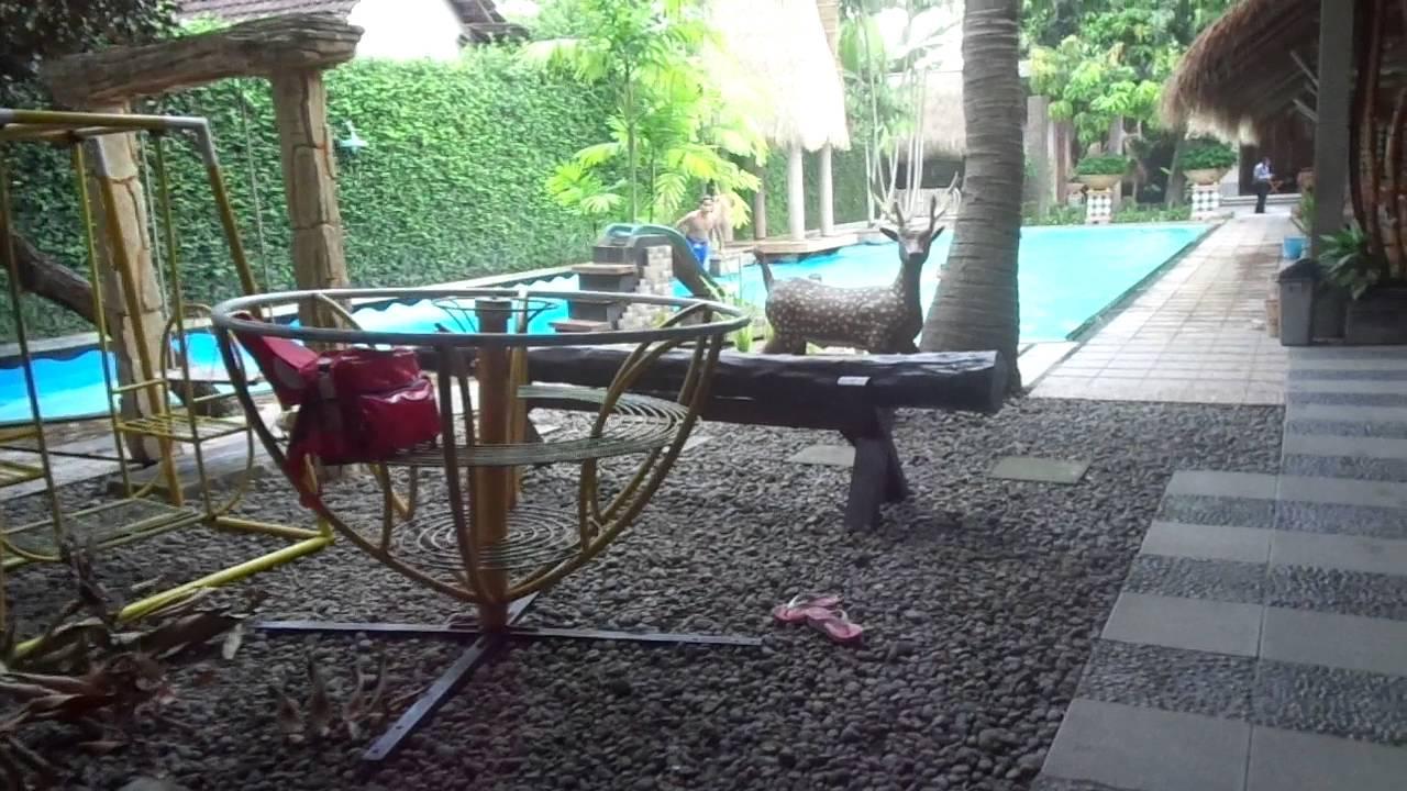 Pondok Keluarga Sentani Madiun Kolam Renang Sewa Gedung Youtube Klenteng