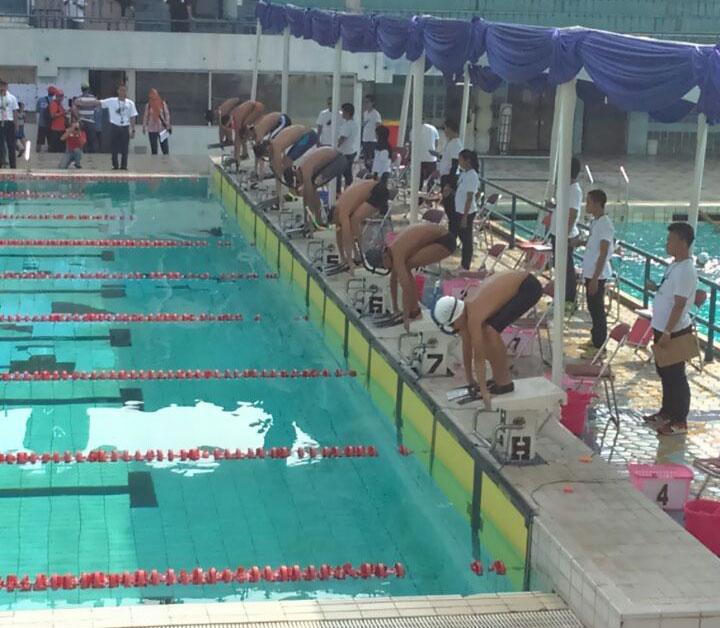 2016 Jakarta Swimming Info Kejurnas Finswimming Nomor Kolam Renang Piranha