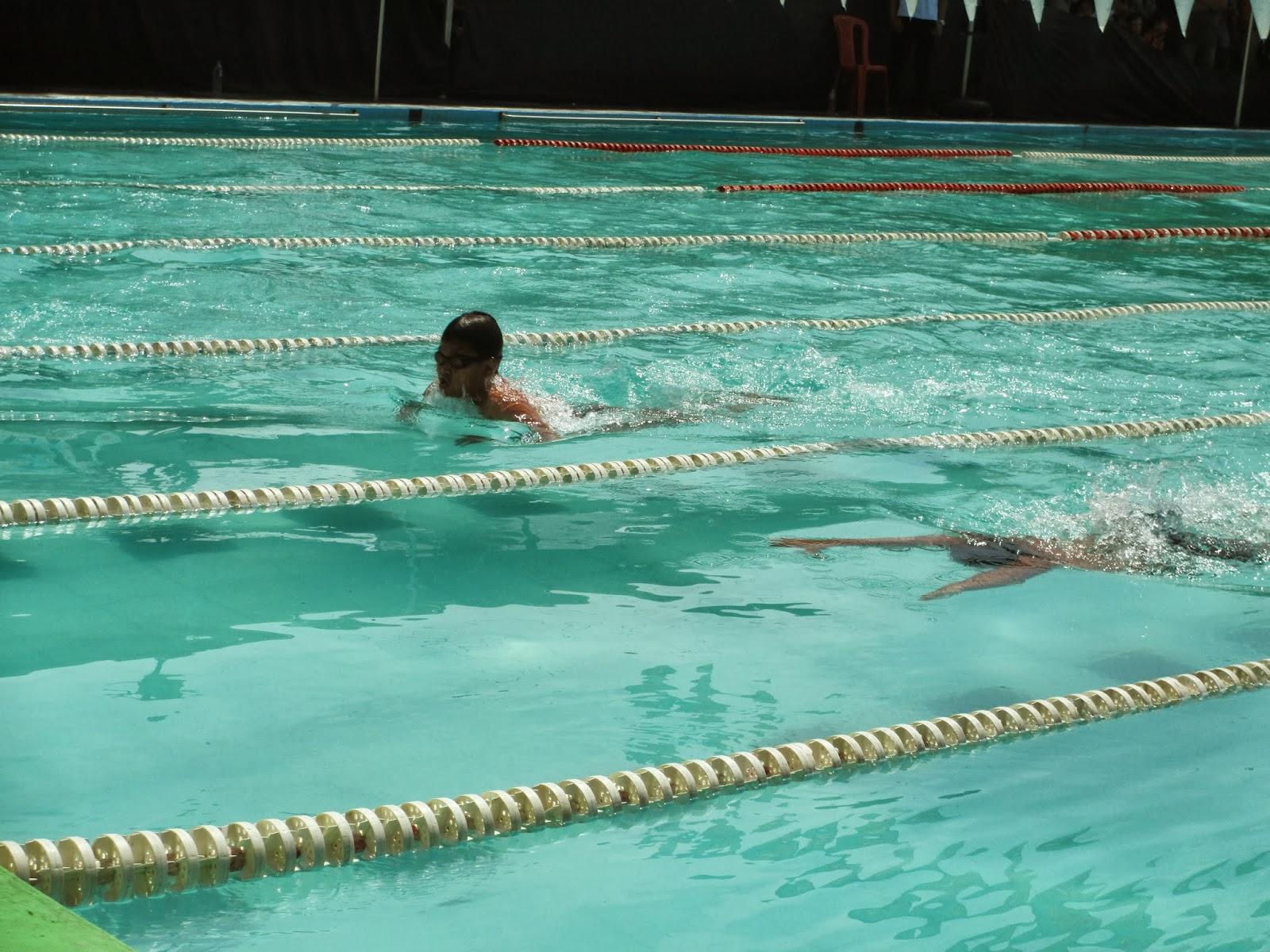 Piranha Swimming Club Madiun Kejuaraan Renang Haornas 2013 Kolam Kab