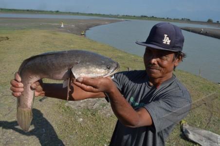 Menjelajahi Topografi Alam Madiun Melalui Objek Wisatanya Panduan Waduk Notopuro