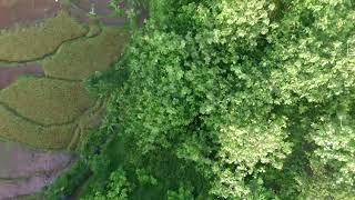 Download Monumen Kresek Videos Dcyoutube Aerial Video Sekitar Kab Madiun