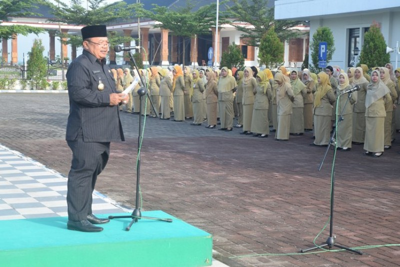 Daerah Bupati Madiun Serahkan Sk Cpns 47 Bidan Ptt Penyuluh