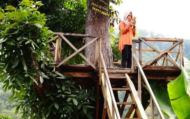 29 Tempat Wisata Madiun Jawa Timur Hits Wajib Dikunjungi Alam