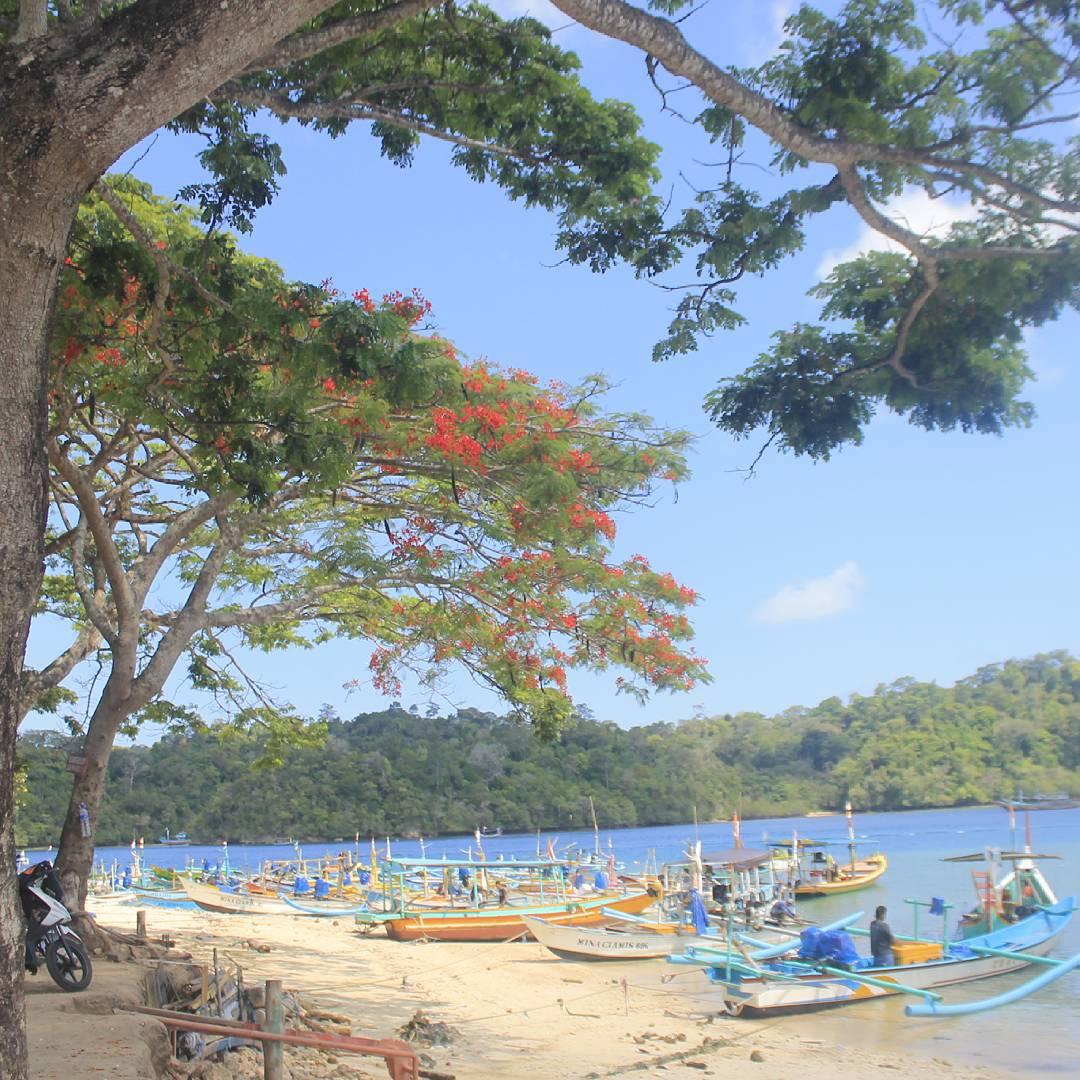 Pantai Sendang Biru Malang Sambil Berenang Sekalian Beli Ikan Ayunindiaput