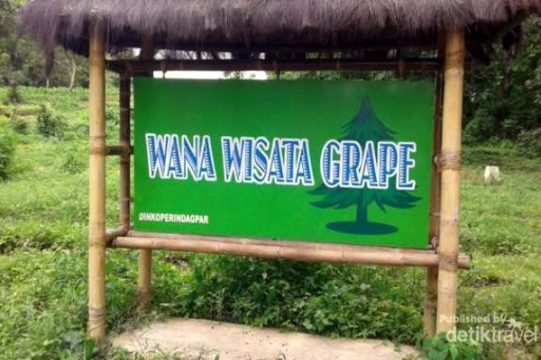 10 Destinasi Dikunjungi Usai Libur Lebaran Madiun Wana Wisata Grape