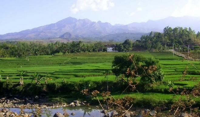 18 Daftar Tempat Wisata Madiun Jawa Timur Kamu Kunjungi Gunung