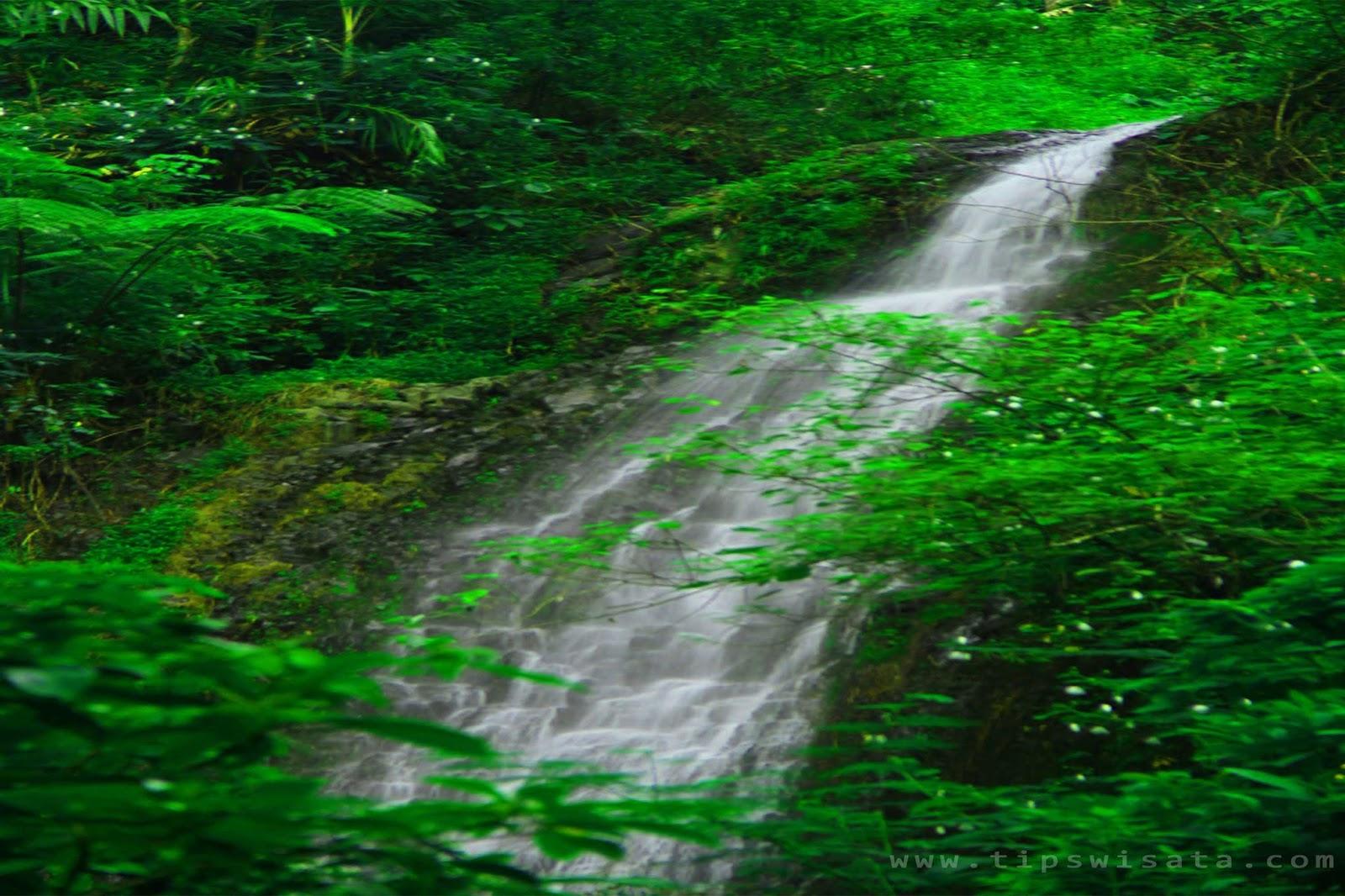 14 Tempat Wisata Madiun Patut Kunjungi Air Terjun Kucur Taman
