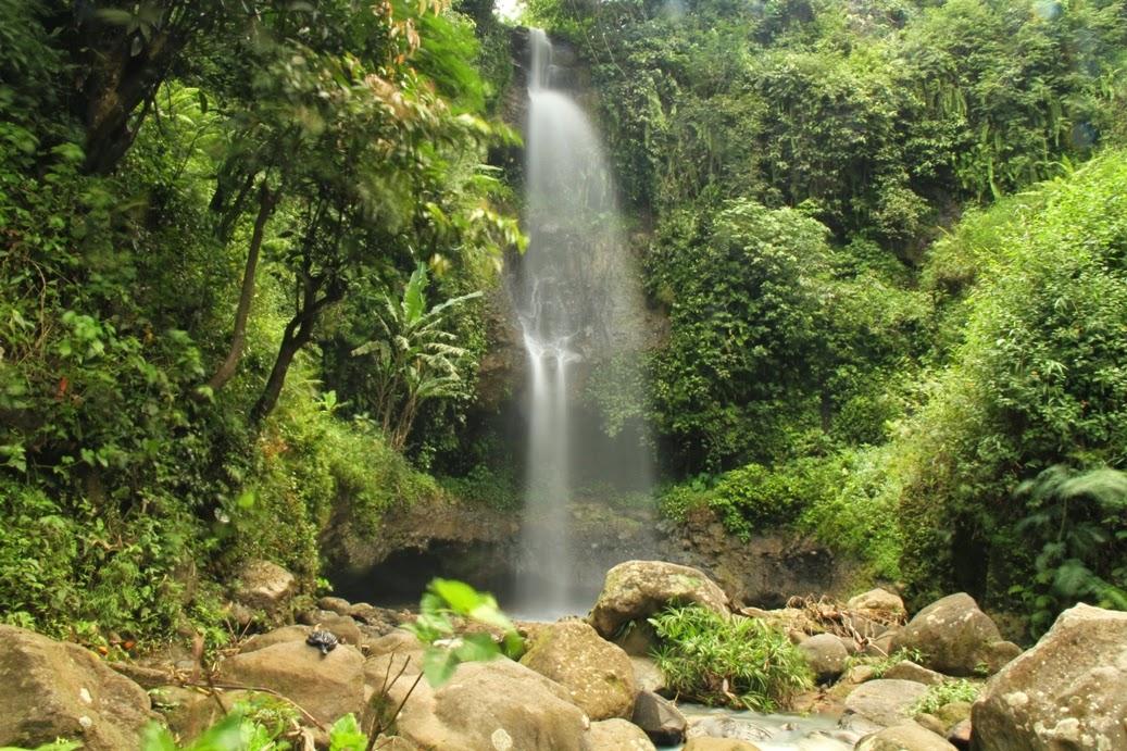 8 Tempat Wisata Madiun Wajib Dikunjungi Ketika Liburan Air Terjun