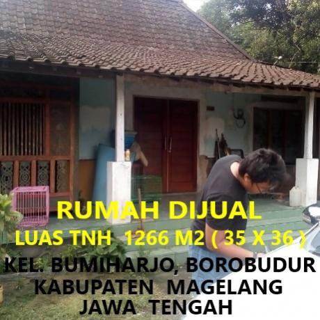 Rumah Dijual Lt 1266 M2 Kel Bumiharjo Borobudur Magelang Kab