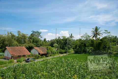 Maw Mblusuk Candi Asu Sengi Pemandangan Puncak Kecamatan Dukun Magelang