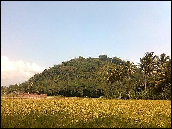 27 Gunung Sari Situs Gunungsari Tarabuwana01 Candi Kab Magelang