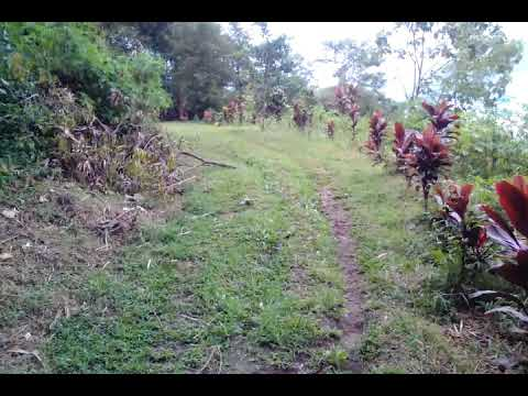Candi Gunung Sari Kab Magelang Youtube
