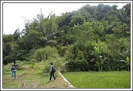 Candi Sari Pendekartidar Siap Mendaki Bukit Gunung Kab Magelang