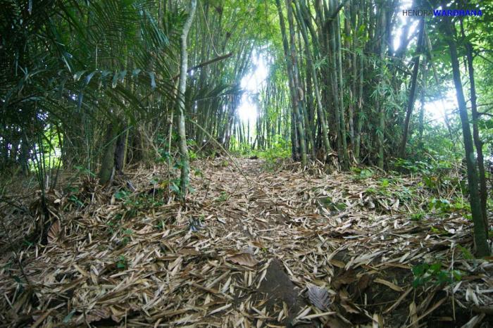 Jejak Peradaban Terasing Terlupakan Gunung Sari Oleh 14232973671658666252 Candi Kab