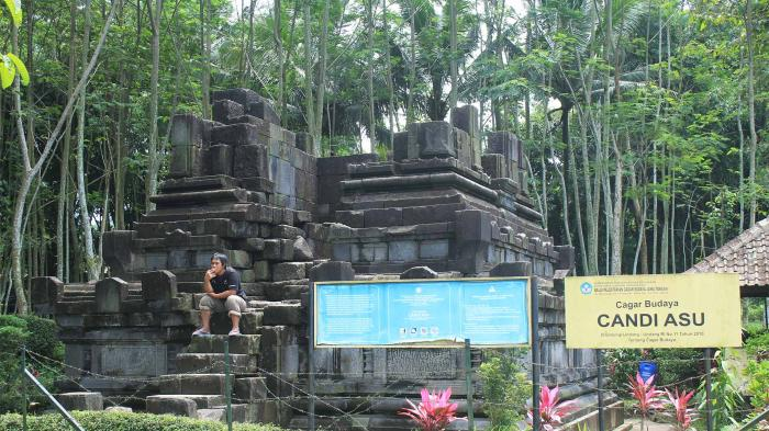 Candi Asu Peninggalan 880 Masehi Letaknya Lereng Magelang Jawa Tengah