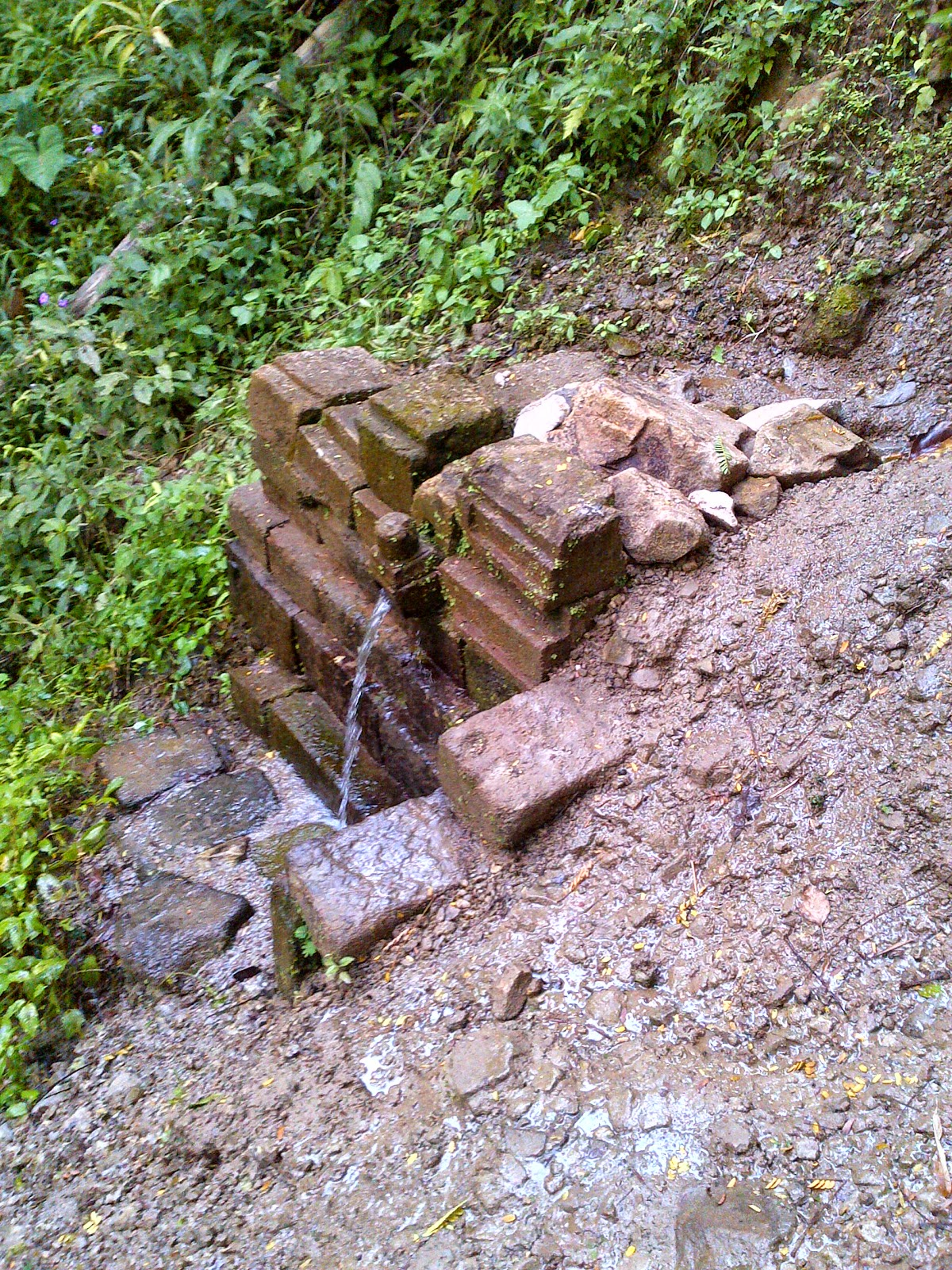 Blusukan Situs Candi Selogriyo Sebuah Peninggalan Purbakala Kecamatan Windusari Kabupaten
