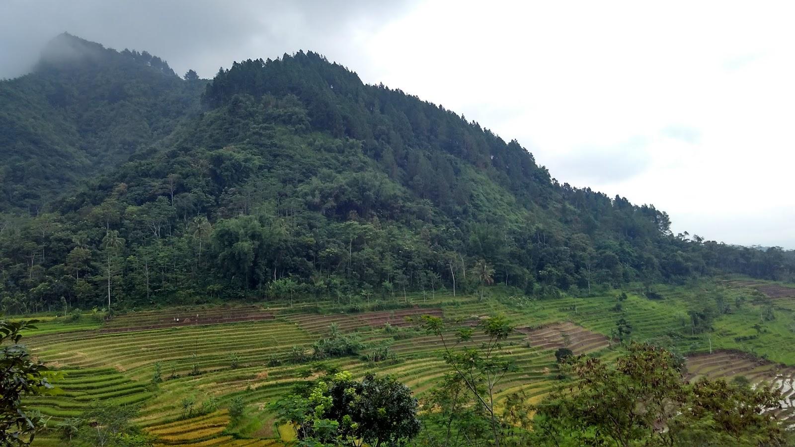 Candi Selogriyo Magelang Puas Tour Event Management Pemandangan Sekitar Indah