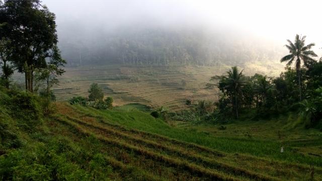 Candi Selogriyo Menatap Bukit Unik Giyanti Trip Kab Magelang