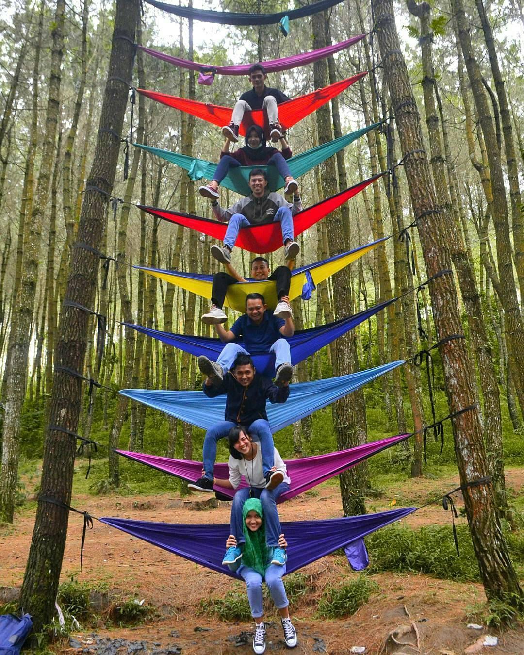 30 Wisata Magelang Biar Tripmu Gak Borobudur Melulu 13 Hutan