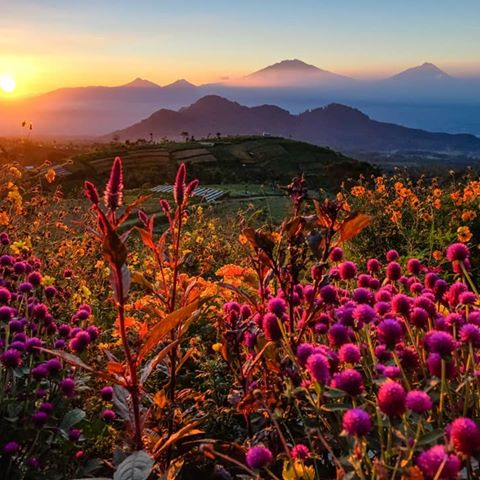 Images Landscapejateng Instagram Morning Glow Lokasi Gardu Pandang Silancur Mangli
